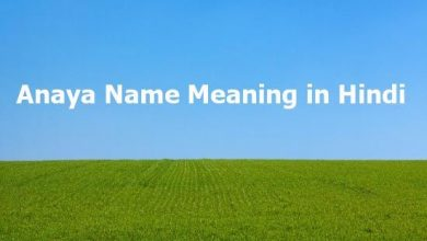 Photo of Anaya Name Meaning in Hindi – अनाया नाम का मतलब