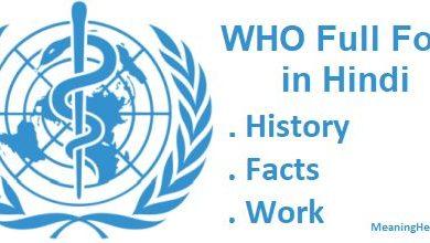 Photo of WHO Full Form in Hindi   क्या है और इसकी जानकारी