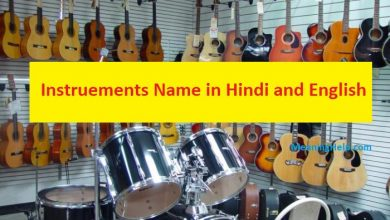 Photo of Musical Instrument Name in Hindi and English